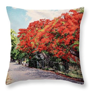 Meeting And Nassau Street Throw Pillow