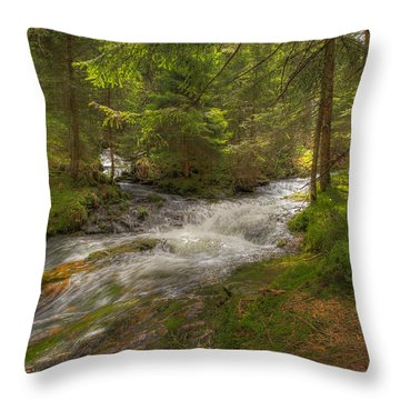 Meeting Of The Streams Throw Pillow