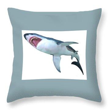 Megalodon Shark Art | Fine Art America