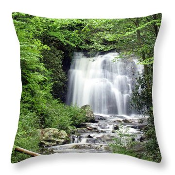 Meigs Falls Throw Pillow by Marty Koch
