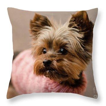 Melanie In Pink Mohair  Throw Pillow