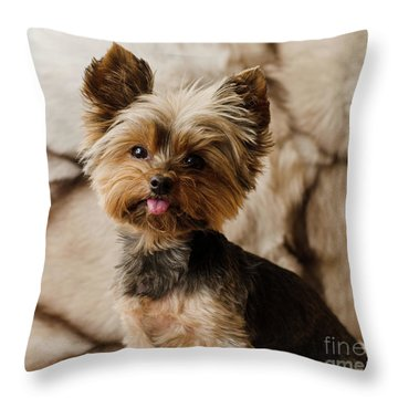 Melanie On Fur Throw Pillow