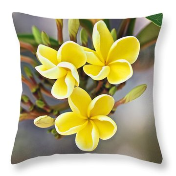 Melemele Throw Pillow