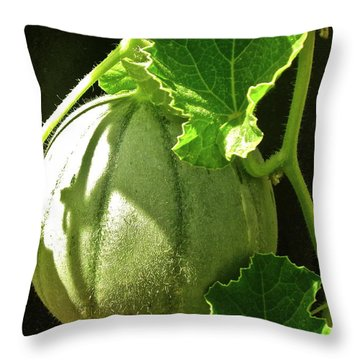 Mellow Mellon Throw Pillow by Gwyn Newcombe