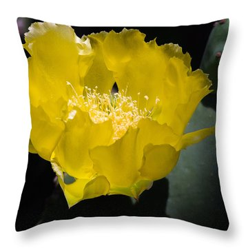 Mellow Yellow Cactus Flower Throw Pillow