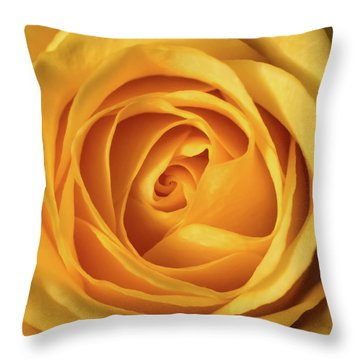 Throw Pillow featuring the photograph Mellow Yellow Rose Square by Terry DeLuco