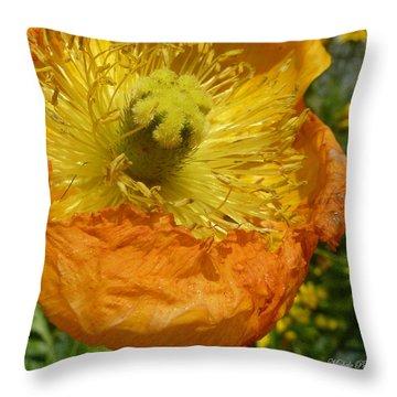 Mellow Yellow - Signed Throw Pillow