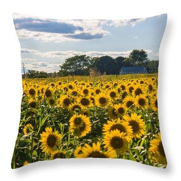 Mellow Yellows Throw Pillow