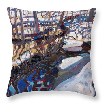 Melt Water And Ice At The Forest Edge Throw Pillow