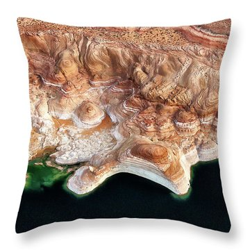 Melted Chocolate And Mint Throw Pillow