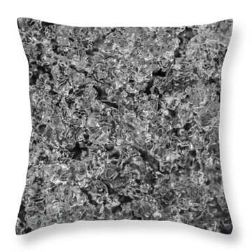 Throw Pillow featuring the photograph Melting Snow by Chevy Fleet