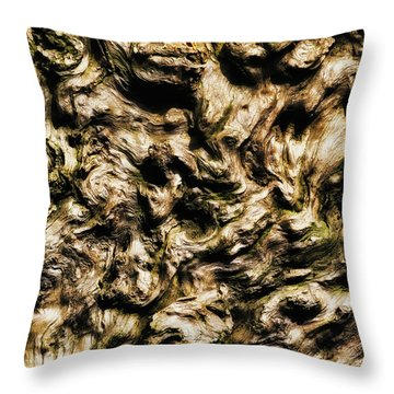 Melting Wood Throw Pillow by Wim Lanclus