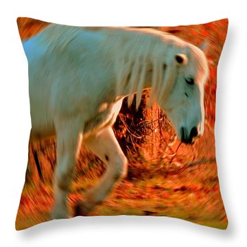 Memories At Sunset Throw Pillow