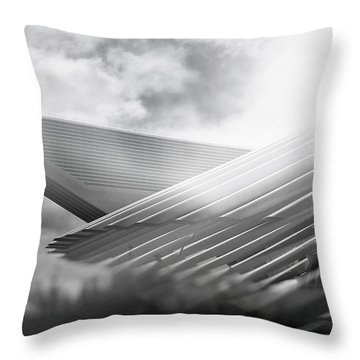 Memories Of A Future Past Throw Pillow