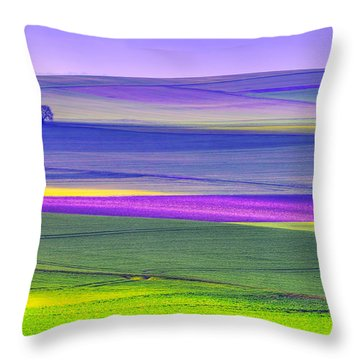 Memories Of Colors Throw Pillow