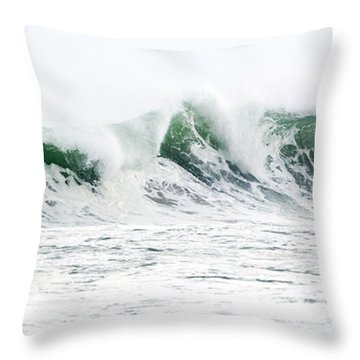 Memories Of Sandy Throw Pillow