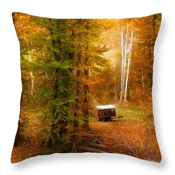 Memories Of Seasons Past  Throw Pillow