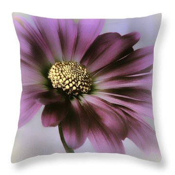 Throw Pillow featuring the photograph Memories Of Spring by Darlene Kwiatkowski