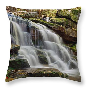 Memories Of West Virginia Throw Pillow