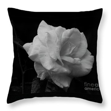 Mendocino Rose01 Throw Pillow