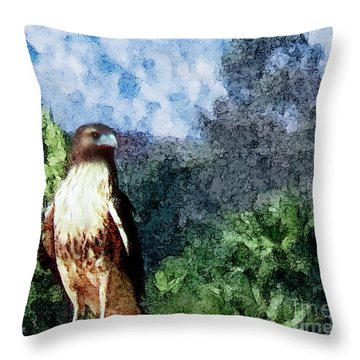 Menifee Falcon Throw Pillow