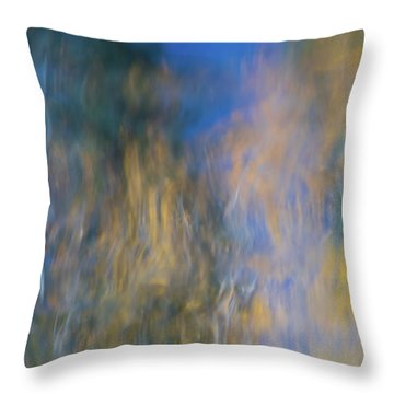 Merced River Reflections 14 Throw Pillow