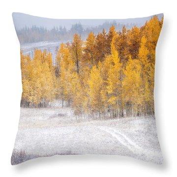 Merging Seasons Throw Pillow by Kristal Kraft