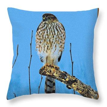 Merlin    Not The Majician Throw Pillow