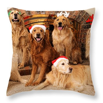 Merry Christmas Throw Pillow by Lawrence Christopher