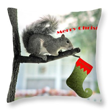 Merry Christmas To All Throw Pillow by Adele Moscaritolo