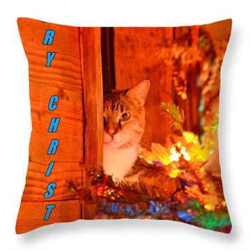 Merry Christmas Waiting For Santa Throw Pillow