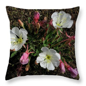 Mesa Blooms Throw Pillow