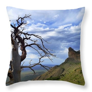 Mesa Verde Mood Throw Pillow