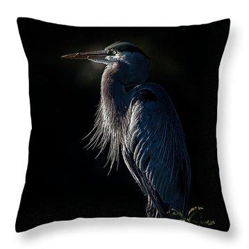 Mesmerized Throw Pillow by Cyndy Doty