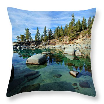 Mesmerized Throw Pillow