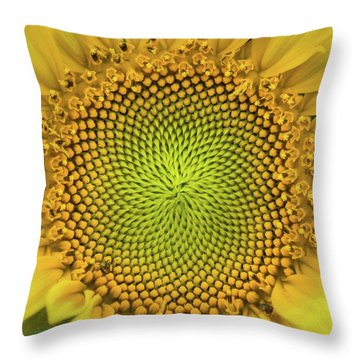 Throw Pillow featuring the photograph Mesmerizing by Bill Pevlor