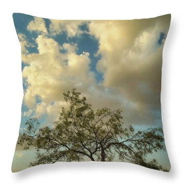 Mesquite Throw Pillow