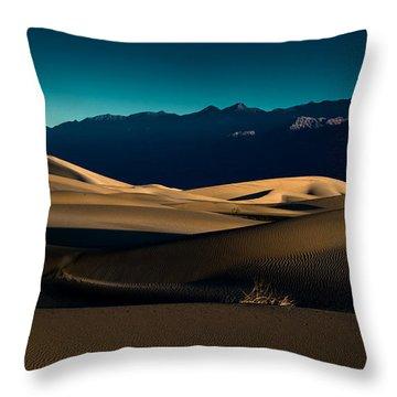 Mesquite Dunes Throw Pillow by Allen Biedrzycki