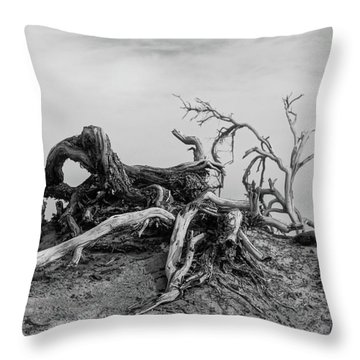 Mesquite Roots - Death Valley 2015 Throw Pillow