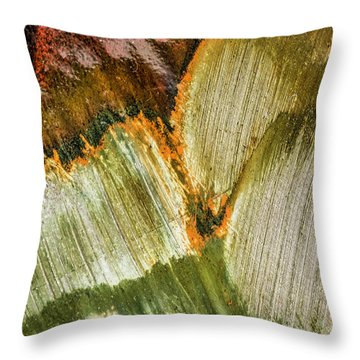 Throw Pillow featuring the photograph Metal Abstract  by David Waldrop