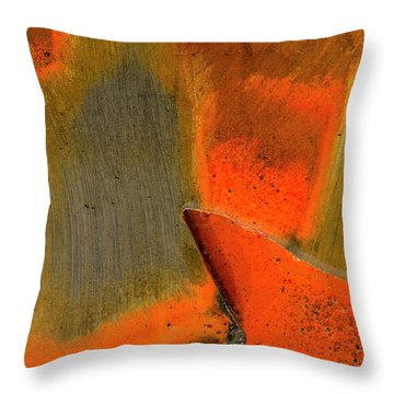 Throw Pillow featuring the photograph Metal Abstract Three by David Waldrop