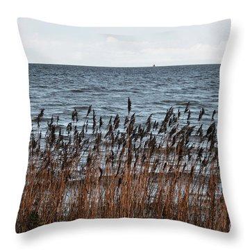 Metallic Sea Throw Pillow