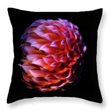 Meteor Dahlia Throw Pillow