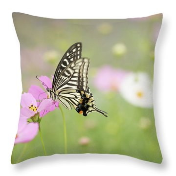 Mexican Aster With Butterfly Throw Pillow by Hyuntae Kim