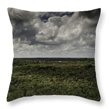 Throw Pillow featuring the photograph Mexican Jungle Panoramic by Jason Moynihan