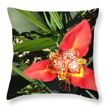 Mexican Orchid Throw Pillow