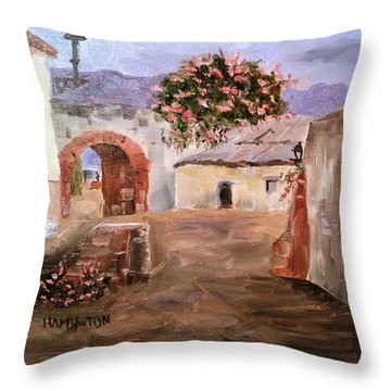 Mexican Street Scene Throw Pillow by Larry Hamilton
