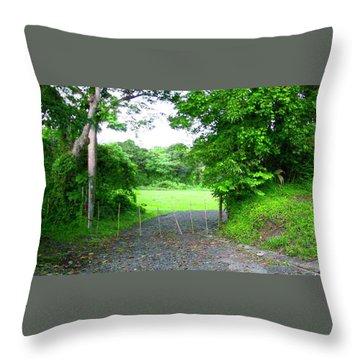 Mi Valle En El Yunque Throw Pillow
