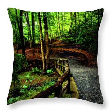 Throw Pillow featuring the photograph Michie Tavern No. 3 by Laura DAddona