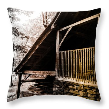 Throw Pillow featuring the photograph Michie Tavern No. 5 by Laura DAddona